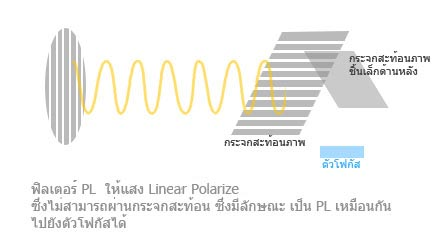 pl-cpl008